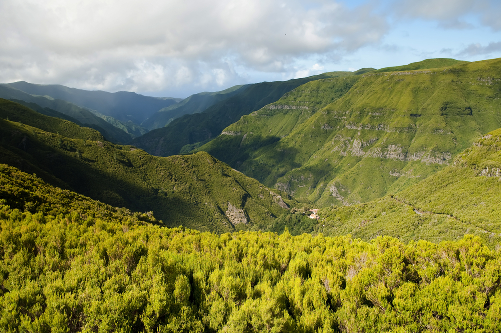 madeira-island-corporate-travel-destination-leisure-work