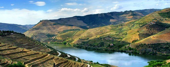 Why is Douro Valley the Key for Your Staff Motivation?