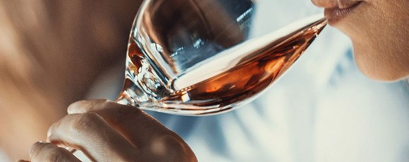 Awaken Your Senses: Team Building Activities to Taste the Port Wine